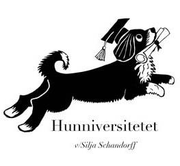 Hundetræning i København